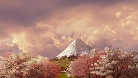 Mt Fuji and cherry blossom at sunset or sunrise 4K. Spring landscape with Fuji mountain and blossoming sakura cherry trees against scenic sunset or sunrise stock video