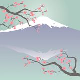 Mt Fuji and Cherry Blossoms. Japanese-style illustration of Mt Fuji and Cherry Blossoms Royalty Free Stock Photos