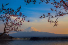 Mt Fuji Stock Image