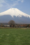 Mt. Fuji and cherry blossoms Stock Image