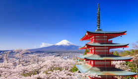 Mt. Fuji with Chureito Pagoda, Fujiyoshida, Japan. Mt. Fuji with Chureito Pagoda in Spring, Fujiyoshida, Japan Royalty Free Stock Photo