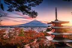 Mt. Fuji with Chureito Pagoda and red leaf in the autumn on suns. Et at Fujiyoshida, Japan stock photography