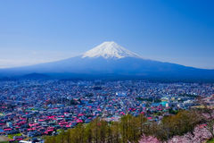Mt Fuji con Cherry Blossom (Sakura) en la primavera, Fujiyoshida, Ja Foto de archivo libre de regalías