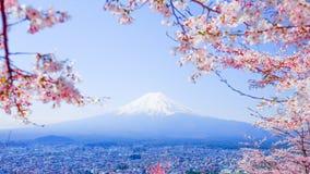 Mt Fuji con Cherry Blossom (Sakura) en la primavera, Fujiyoshida, Ja Imagen de archivo libre de regalías