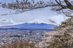 Mt.fuji con el primero plano de Sakura en la pagoda de Chureito Imagenes de archivo