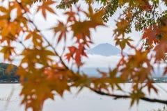 Mt Fuji dans la saison d'automne au Japon avec l'arbre d'érable de tache floue part et fond nuageux Photo libre de droits