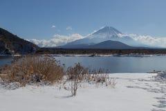 MT Fuji in de winter, Japan royalty-vrije stock afbeelding