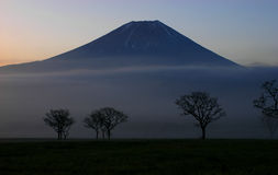 Mt fuji dg-23 Royalty Free Stock Image