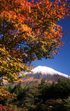 Mt Fuji dg-67 Stockbild