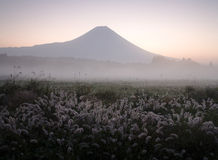 Mt fuji-dg2 Stock Images