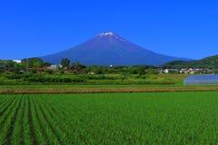 Mt Fuji do céu azul da cidade Japão de Fujiyoshida imagens de stock