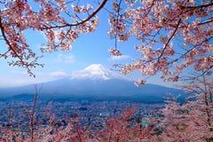 Mt Fuji e Cherry Blossom nella stagione primaverile del Giappone (caloria giapponese illustrazione di stock