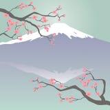 Mt Fuji e fiori di ciliegia illustrazione vettoriale