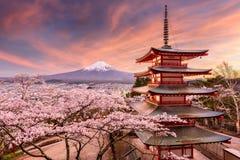 Mt Fuji e pagoda in primavera Fotografia Stock