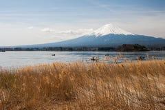 Mt Fuji in the early morning Stock Photo