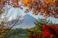 Mt Fuji en automne avec des feuilles d'érable rouge Image libre de droits