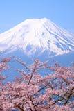 MT Fuji en Cherry Blossom in de Lentetijd Japanner van Japan stock foto's