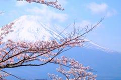 MT Fuji en Cherry Blossom in de Lentetijd van Japan (Japanse Cal royalty-vrije stock foto