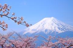 MT Fuji en Cherry Blossom in de Lentetijd van Japan (Japanse Cal royalty-vrije stock afbeeldingen