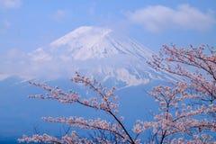 MT Fuji en Cherry Blossom in de Lentetijd & x28 van Japan; Japanse Cal stock afbeeldingen