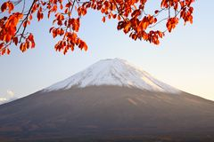 Mt. Fuji Royalty Free Stock Images