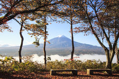 Mt. Fuji with fall colors in Japan Royalty Free Stock Image