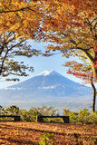 Mt. Fuji with fall colors in japan Royalty Free Stock Photography