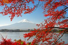 Mt Fuji Stock Photography