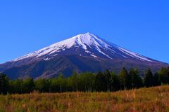 Mt.Fuji from the Forest Road Fuji Line in Narusawa village Japan Stock Images