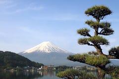 Mt Fuji, Giappone Immagini Stock