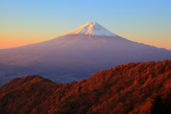 Mt. Fuji glows in the morning sun Royalty Free Stock Images