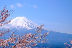 Mt Fuji i Czereśniowy okwitnięcie w Japonia wiosny sezonie ilustracja wektor