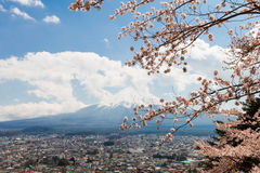 Mt fuji i den körsbärsröda blomningen sakura i vårsäsong på himmelbakgrunden, det mest berömda stället i Japan Arkivfoton