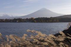 Mt Fuji i hösten, Japan Royaltyfria Foton