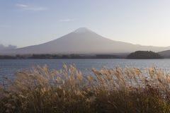 Mt Fuji i hösten, Japan Royaltyfri Bild