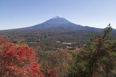 Mt Fuji i hösten, Japan Arkivfoto