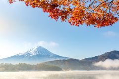 Mt Fuji i hösten Japan Fotografering för Bildbyråer