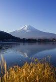 Mt Fuji i ottan med reflexion på sjökawaguchikoen Royaltyfri Fotografi