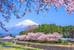 Mt Fuji im Frühjahr lizenzfreie stockbilder