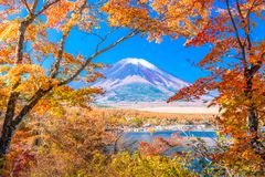 Mt Fuji Japan Autumn Landscape arkivbilder