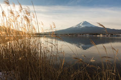 """Mt. Fuji with Kawaguchiko lake. Japan's Mt. Fuji is an active volcano about 100 kilometers southwest of Tokyo. Commonly called """"Fuji-san,"""" it's the Stock Images"""