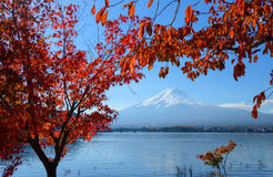 Mt.Fuji and Lake Kawaguchi in autumn Royalty Free Stock Photo
