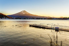 Mt. Fuji in  at Lake Kawaguchiko Stock Photo