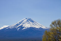 Mt Fuji at lake Kawaguchiko in japan. Royalty Free Stock Images