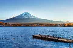 Mt. Fuji at lake Kawaguchiko Royalty Free Stock Photo