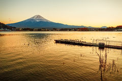 Mt. Fuji at lake Kawaguchiko Royalty Free Stock Photography