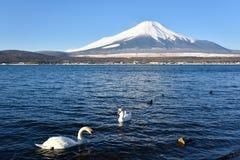 Mt.Fuji at Lake Yamanaka Stock Images