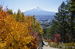Mt.Fuji and maples Stock Image