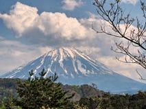 Mt Fuji, marco japonês famoso com flores imagens de stock