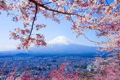 Mt Fuji med Cherry Blossom (Sakura) i våren, Fujiyoshida, Ja royaltyfri bild